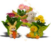 Gerbera Easter Plush